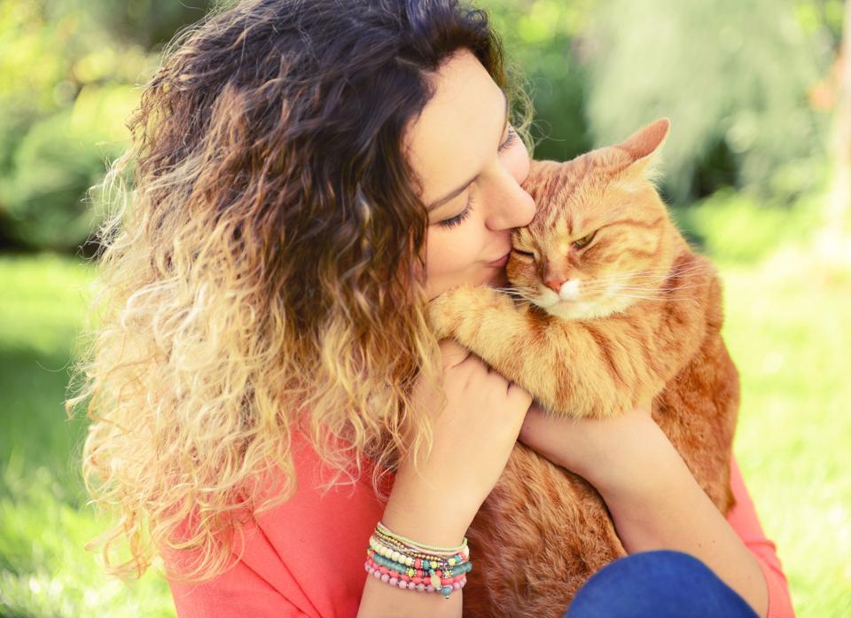 Cats,Kitling & Co,Cat Adoptathon