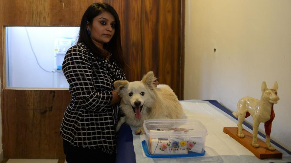 Pet owners often complain that although the government pet clinics are free, their facilities are bare minimum and the general environment unhealthy.  (Sajjad Hussain/AFP)