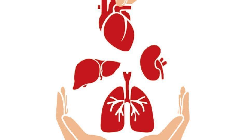 Mumbai city news,organ transplant,uterus transplant