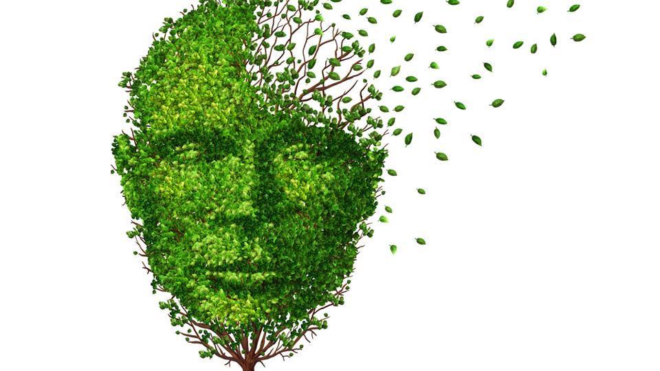 Alzheimer's,Alzheimer's Prevention,Prevention Of Alzheimer's