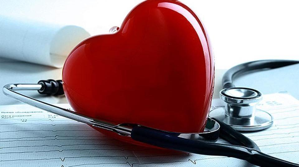 Muffin,Heart health,Heart
