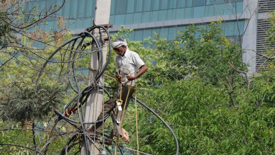 A DHBVN worker repairs a damaged cable in Sector 15. The rain on Sunday had damaged electricity wires and poles.
