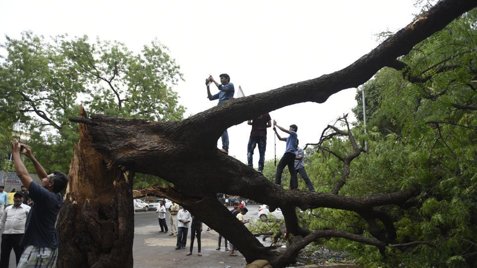People taking selfies in front of the fallen at Jantar Mantar on Monday.