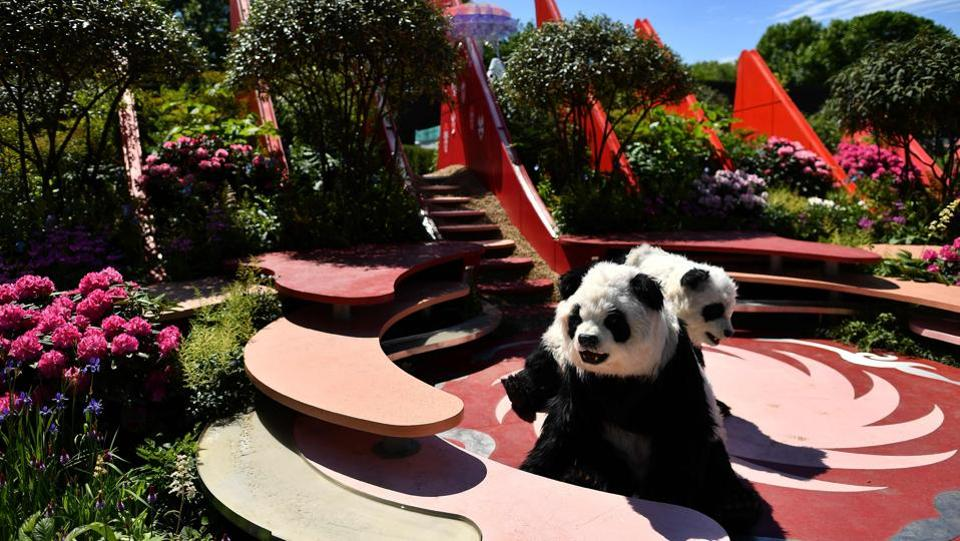 'Panda's' are pictured in the 'Chengdu Silk Road Garden'. (Ben STANSALL / AFP)