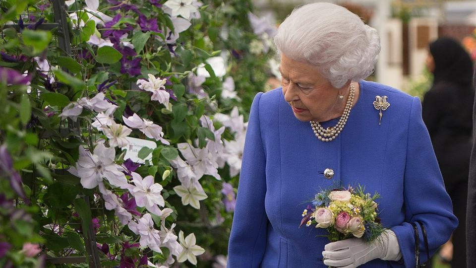 Britain's Queen Elizabeth II visits the Chelsea Flower Show . Thousands of people are expected to visit the event, which takes place in the grounds of the Royal Hospital Chelsea in London. (ULIAN SIMMONDS / AFP)
