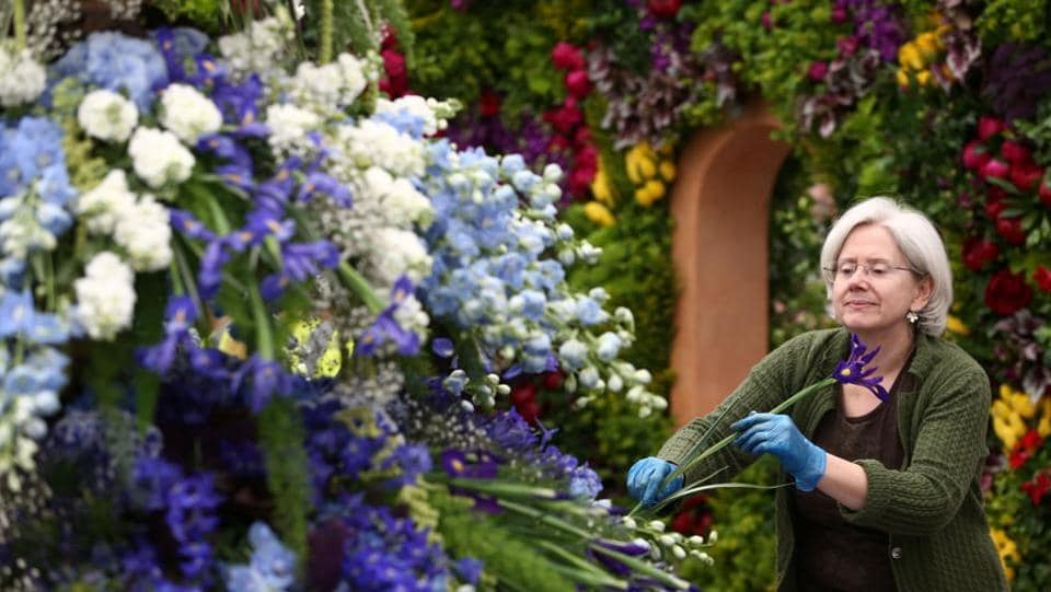 An exhibitor prepares a display at the RHS Chelsea Flower Show . (Neil Hall / REUTERS)