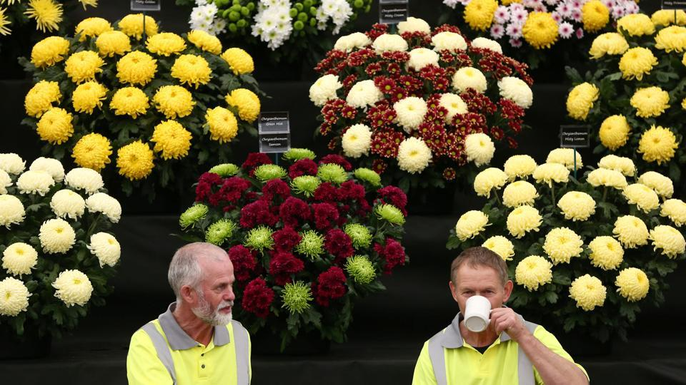 Gardeners have a tea break at the RHS London. (Neil Hall / REUTERS)