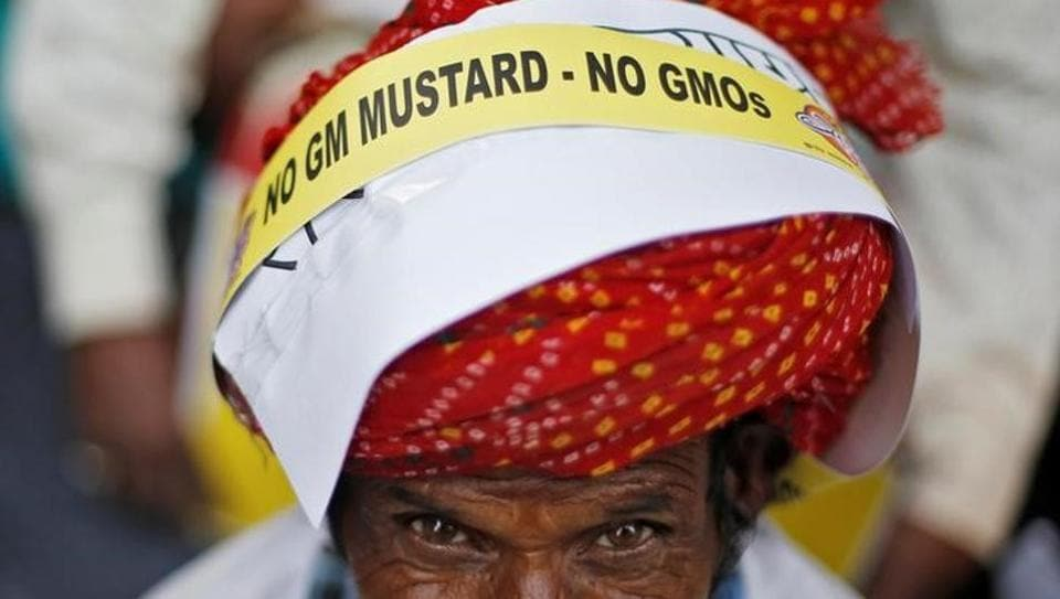 A farmer protests in New Delhi against the plan to allow genetically modified mustard crop.