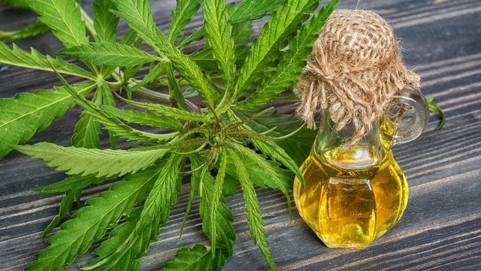 Researchers used an experimental liquid form of CBD, which has not been approved for use by the US Food and Drug Administration.