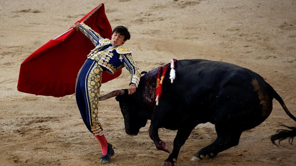 Bullfighter Roca Rey barely misses a bull's horn during San Isidro's bullfighting fair. In 2013, Spain's deep tradition of bullfights was named part of the country's cultural heritage. The matador plays the lead role who kills the bull to win the cheers from the crowd. Over the years, animal rights activists have protested against the tradition claiming  it to be violent and a blatant form of animal cruelty.   (Susana Vera / Reuters)