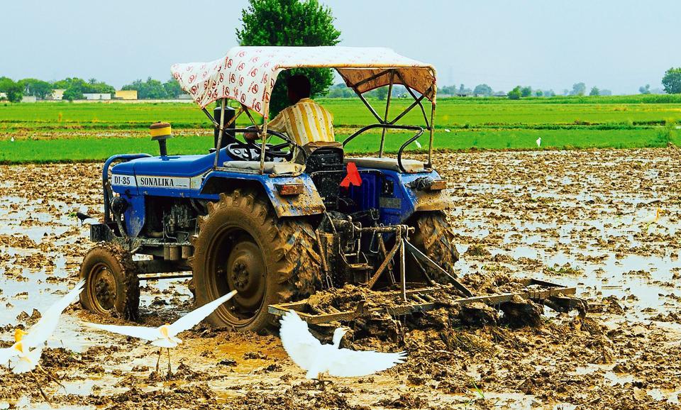 Farmer,Suicide,Panna