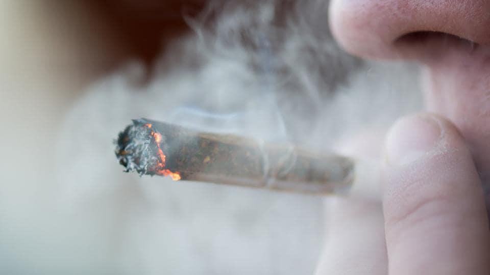 Recreational weed,Gum disease,Cannabis