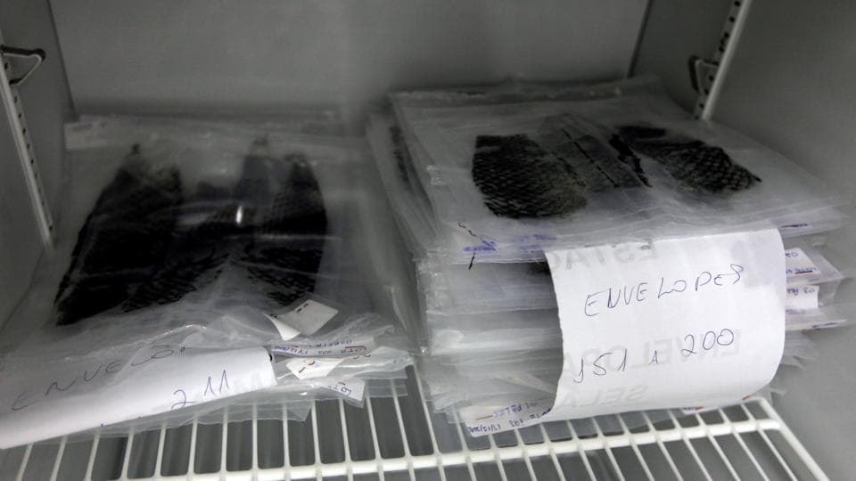 Packs of sterilised tilapia fish skin are displayed at Medicine Development Centre. The researchers hope the treatment will prove commercially viable and encourage businesses to process tilapia skin for medical use. (REUTERS)