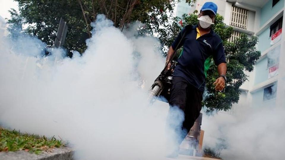 Zika,Aedes aegypti,Ahmedabad