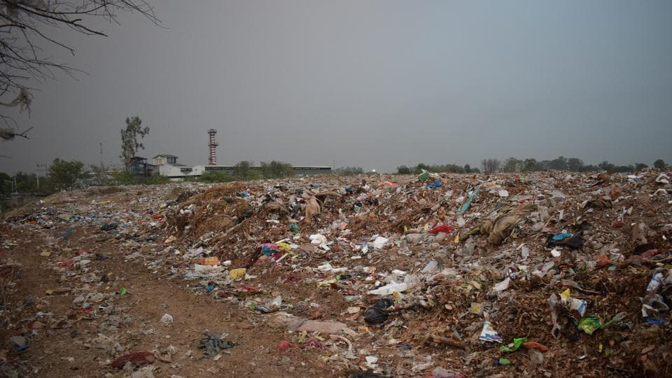 Hotels and restaurants produce more than five tonnes of garbage everyday in Chandigarh.