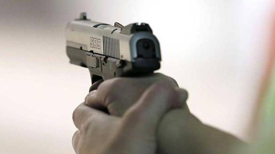 Punjab,arms license holders,arms license database