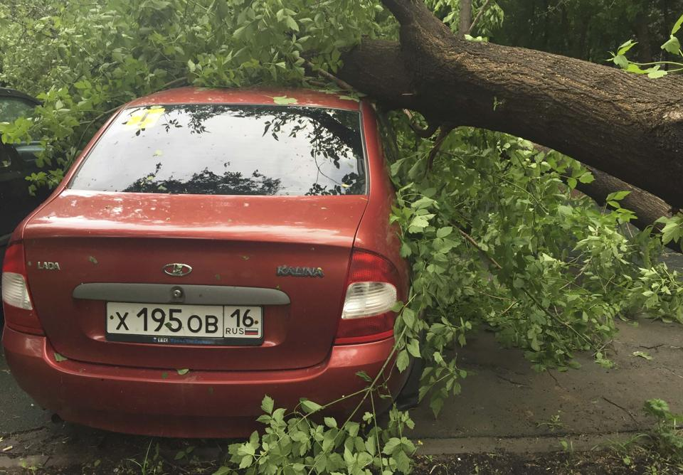 A tree, which was uprooted by a heavy storm, is seen on a car in Moscow, Russia, May 29.