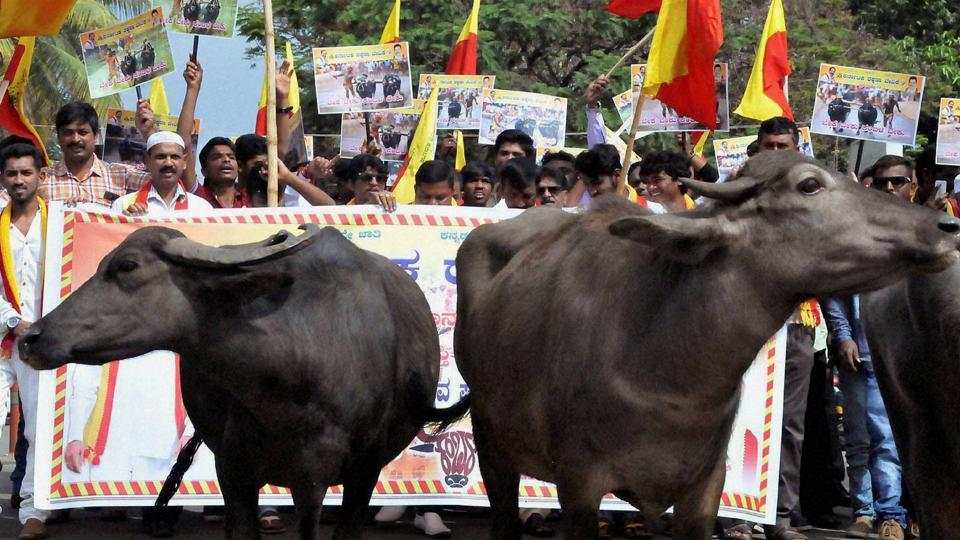 Cattle trade rules,Cow slaughter,Environment ministry