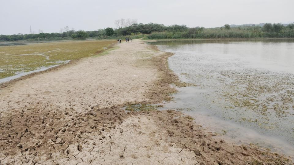 Sukhna Lake,catchment,encroachers