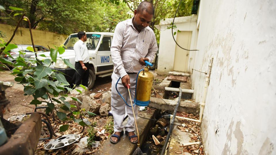 Delhi has as many as 80 cases of chikungunya and 30 of dengue, as per municipal corporation reports, since January.