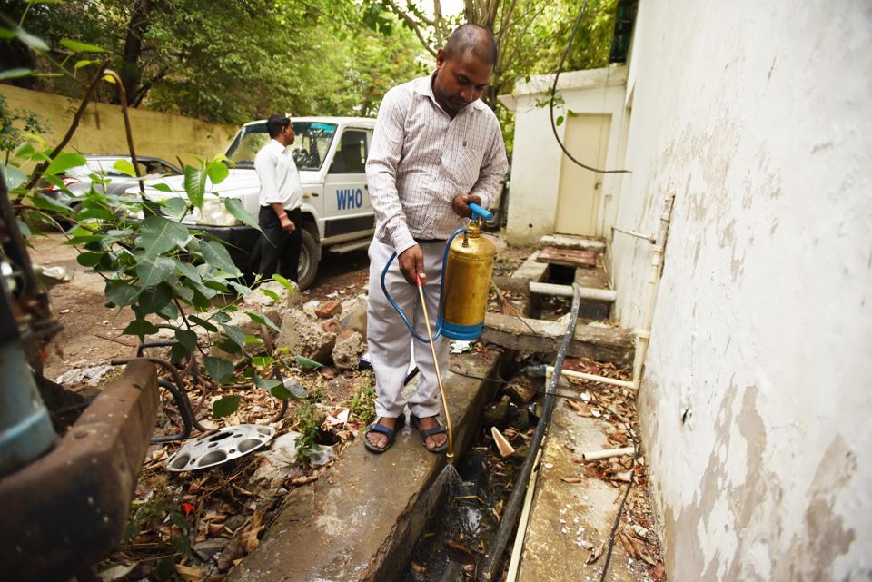Noida news,Dengue,Chikungunya