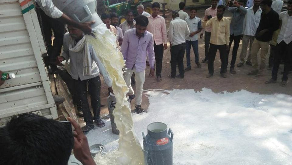 Maharashtra farmers spill milk in protest over loan waiver in Shirdi