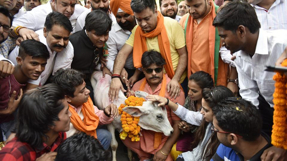 BJP Yuva Morcha activists protesting against the slaughter of a calf by Youth Congress leaders in Kerala, in New Delhi, India, May 30, 2017