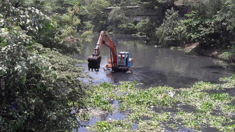 An excavator clearing water hyacinth from the Mithi river on Saturday.