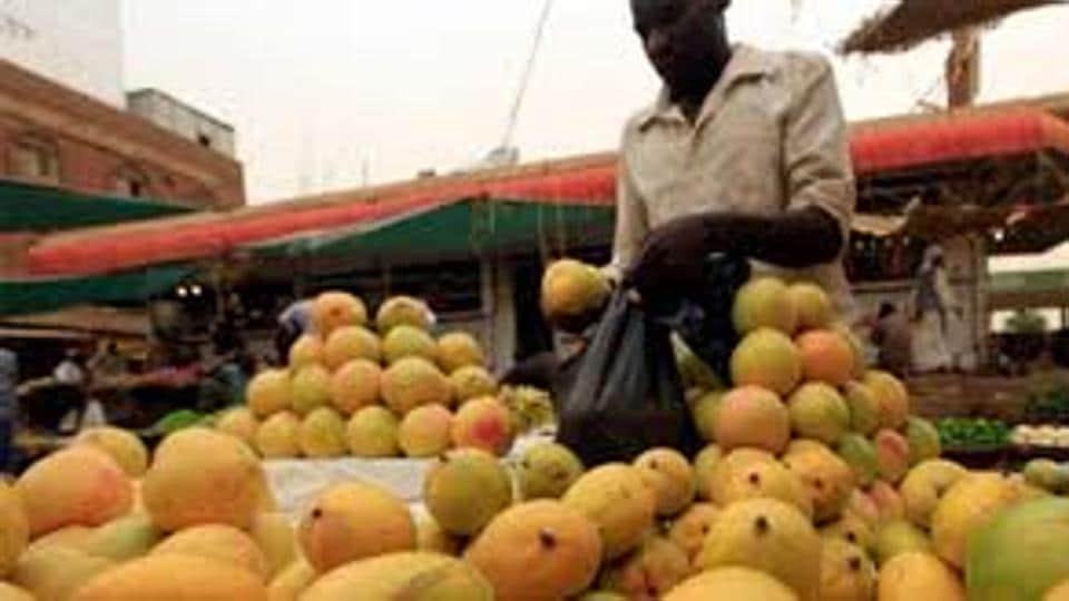 Mango,West Bengal,Murshidabad