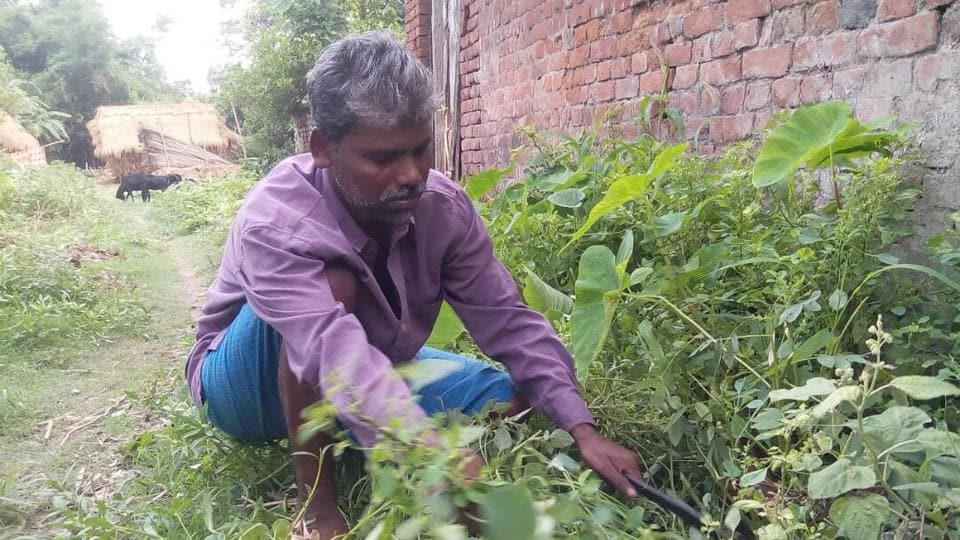 Pradip Halder working in his village. He earns around Rs 4,000 a month.
