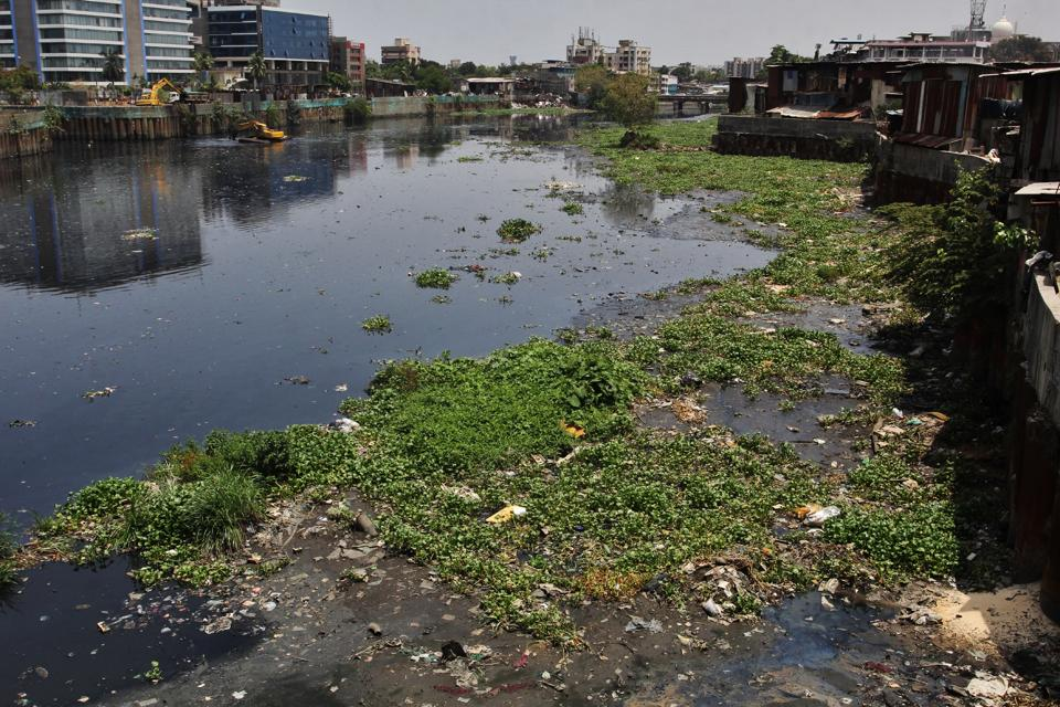 The BMC has only completed 20%of pre-monsoon cleaning on the Mithi river.