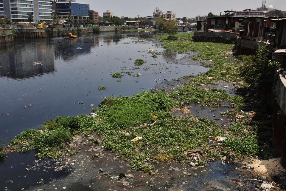 HT monsoon audit,mumbai monsoon,monsoon