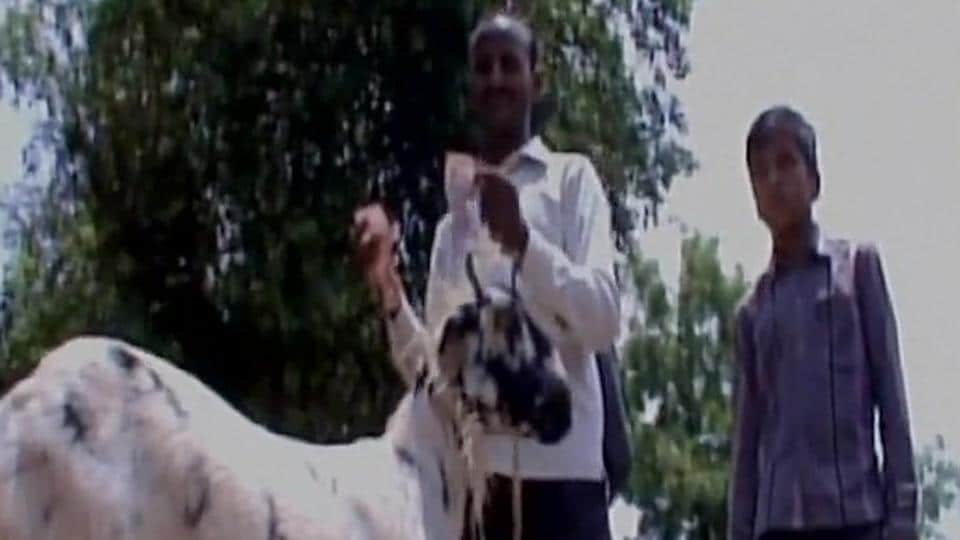 Goat eats master's currency notes worth Rs 62000 in UP