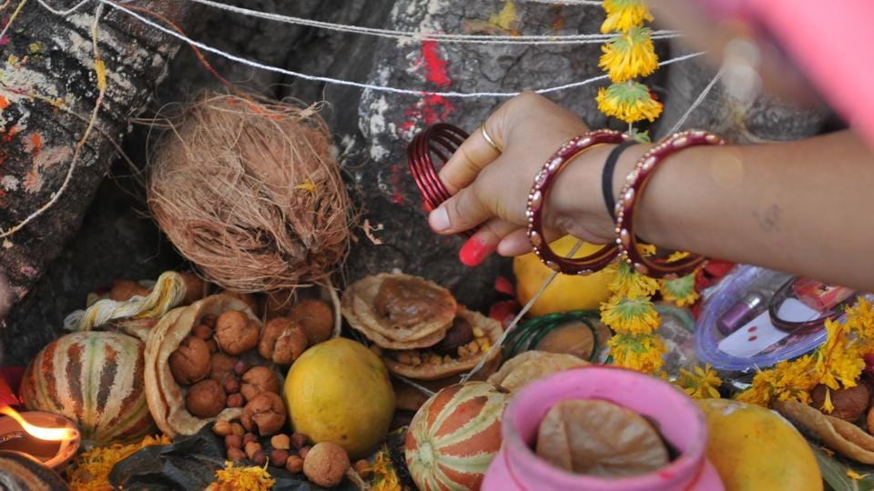 Soaked pulses, rice and fruits are offered as bhog to the Banyan tree. After completing all the rituals, there is also a tradition of donating food, clothes and money. (Mujeeb Faruqui/HT Photo)