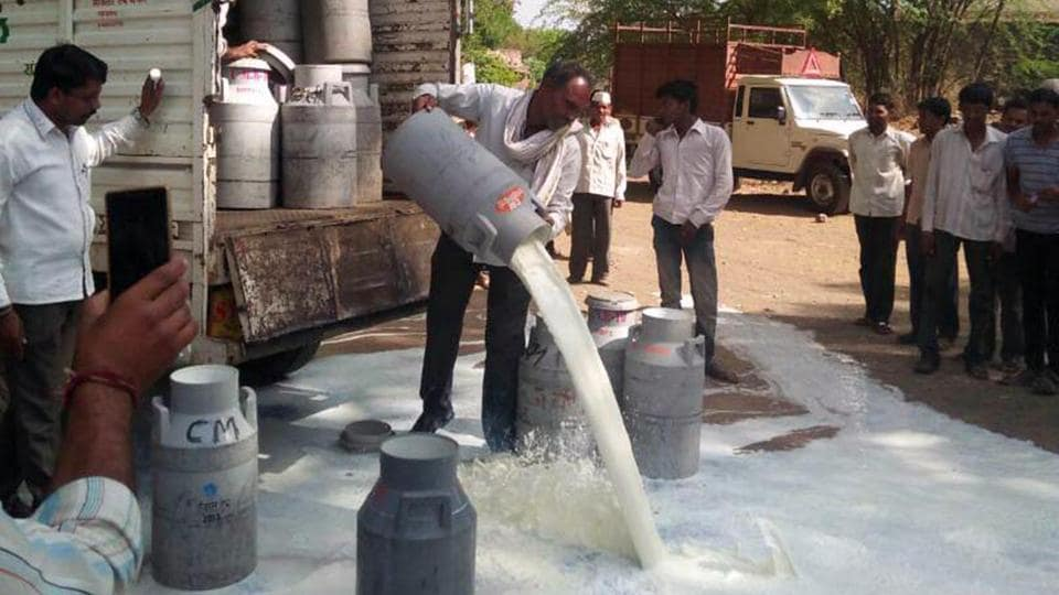 Farmers on strike spill milk  from canisters in protest against the government of Maharashtra in Aurangabad in June. (ht photos)
