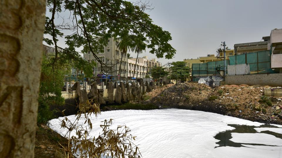 Bangalore's polluted Bellandur lake has been in news for its froth and frequent episodes of fire on the surface.