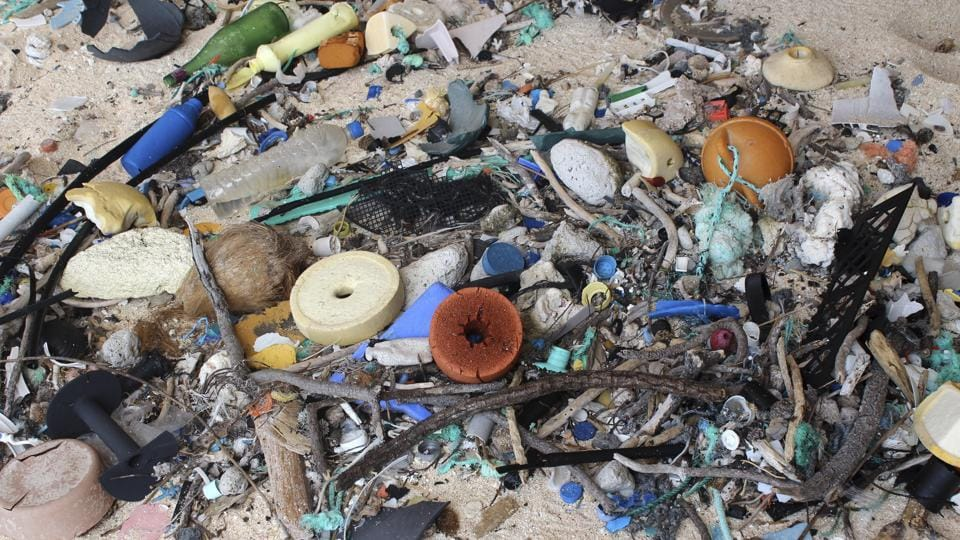 A view of trash on East Beach at Henderson Island, in the south Pacific Ocean. Debris washed ashore on beaches is ingested by birds and animals mistaking it for food. (Jennifer Lavers/NYT)