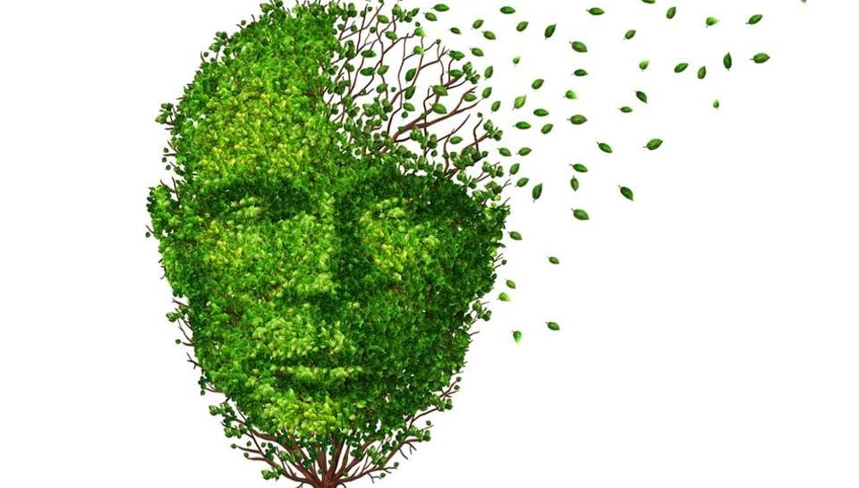 Huntington's disease is an inherited condition in which nerve cells in the brain break down over time.