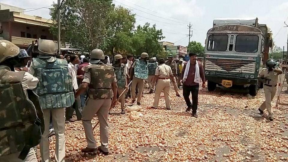 Angry farmers throw ing onions and other vegetables on the road during a protest at Shajapur, MP. Farmers in Madhya Pradesh and Maharashtra have been protesting over a variety of concerns since June 01, 2017 with no relief despite the 2016 harvest figures showing a year-on-year increase according to the Ministry of Agriculture. These protests stem from demands for an increased minimum support price not being met and are compounded by louder calls for loan waivers as promised by the BJP government to farmer in the state of Uttar Pradesh in April. (PTI)