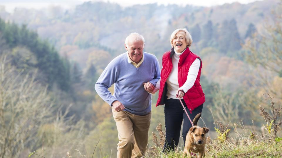 The research team found that dog owners were more active.