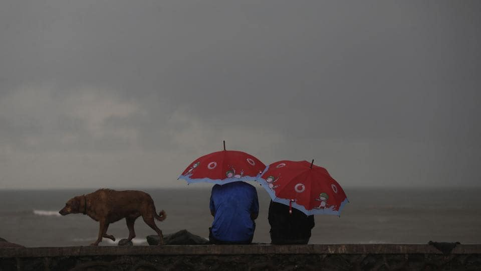 Indians sit holding umbrellas on the Arabian sea coast during monsoon rains as a dog walks past in Mumbai.
