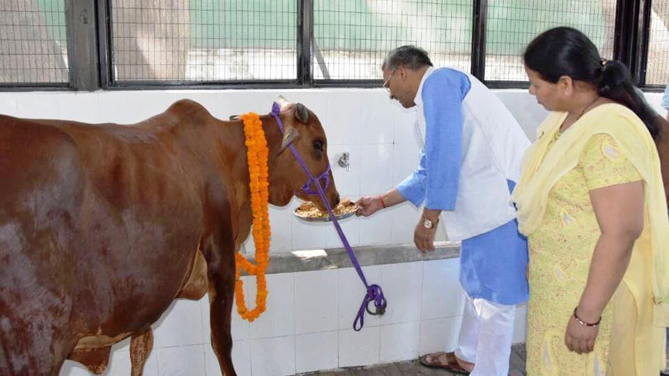 Uttarakhand News,Hindutva,cow