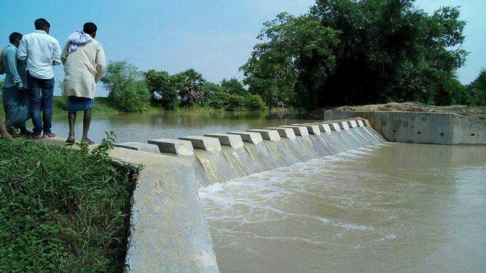 A reservoir in Nalanda, Bihar.