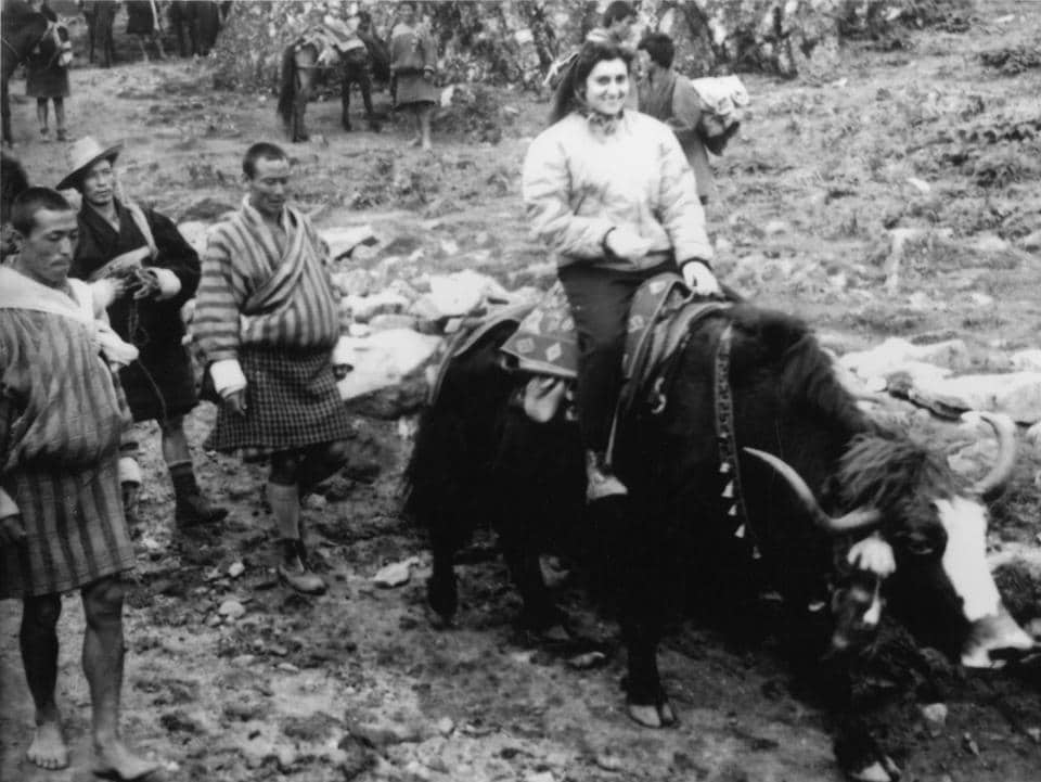Indira Gandhi on a yak on trip to Bhutan; 1958.
