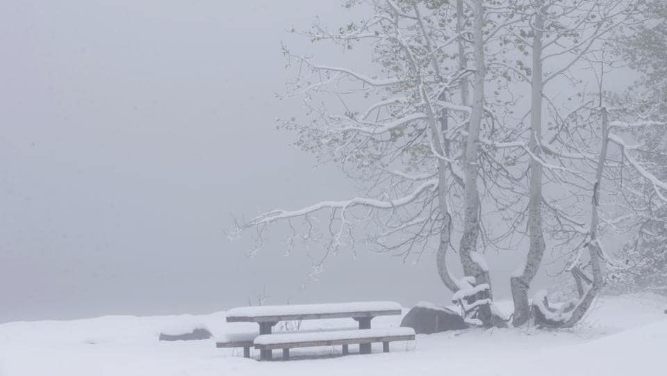 Snow covers a picnic table at Serene Lakes. Many mountains in the Rockies, Sierra and Cascades are packed with at least 8 feet of snow, the National Weather Service said, creating a dream summer for skiers and snowboarders. (Rich Pedroncelli / AP)
