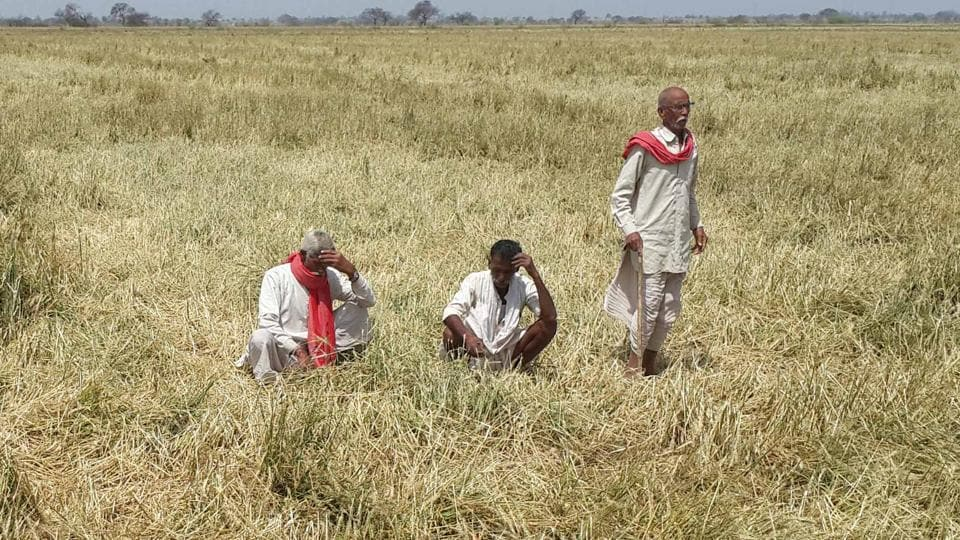 Farmers in Jodhpur and Alwar have decided to join the farmers' movement and will protest on June 16.