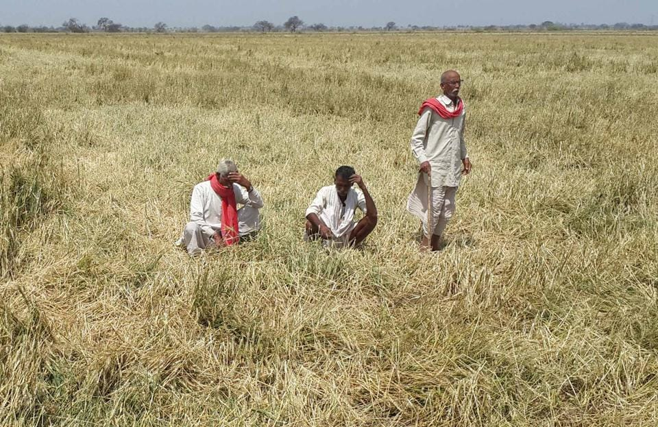 The Rajasthan government has announced to waive off  farm loans up to Rs 50,000.