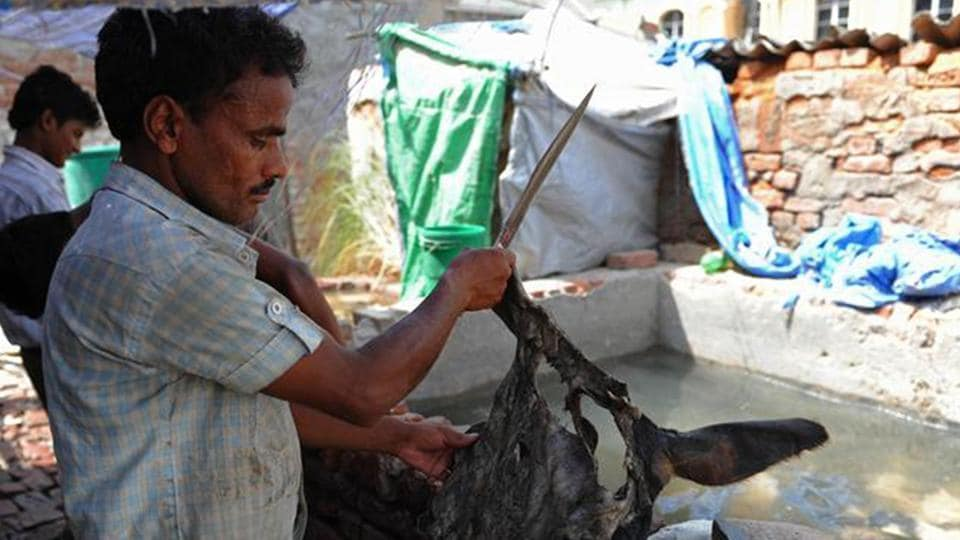 These tanneries cluster in Jajmau area of Kanpur employ over two million people.