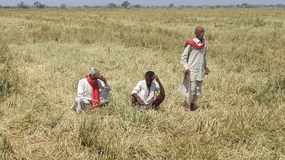 Experts say that burden of farm loan waiver, which is a short-term measure, should fall on the Centre which should also announce a hike in MSP.
