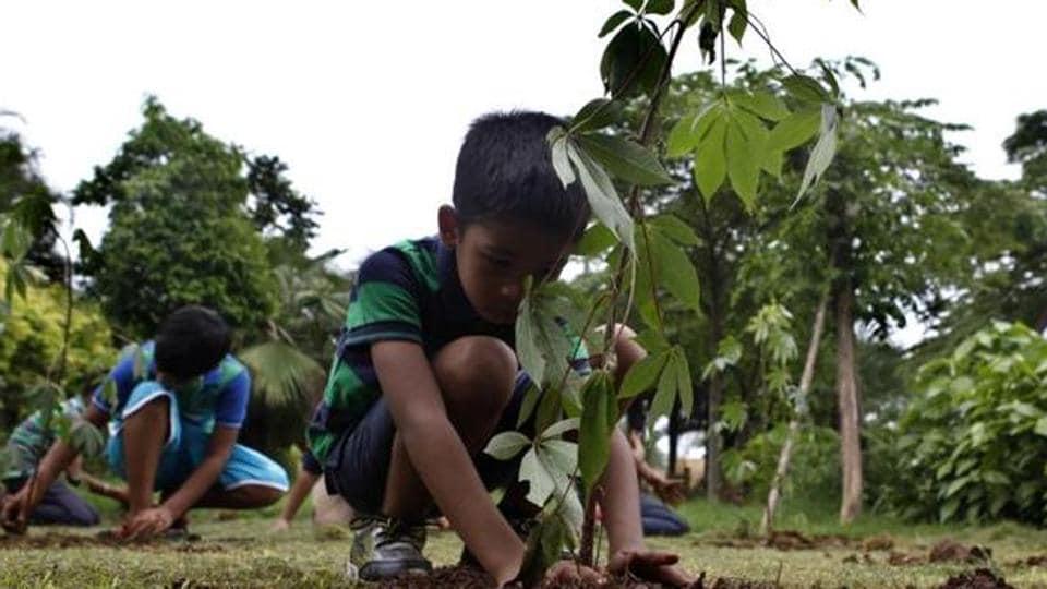 Mumbai city news,saplings,plantation